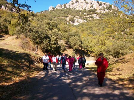 Excursion Las Mimbres